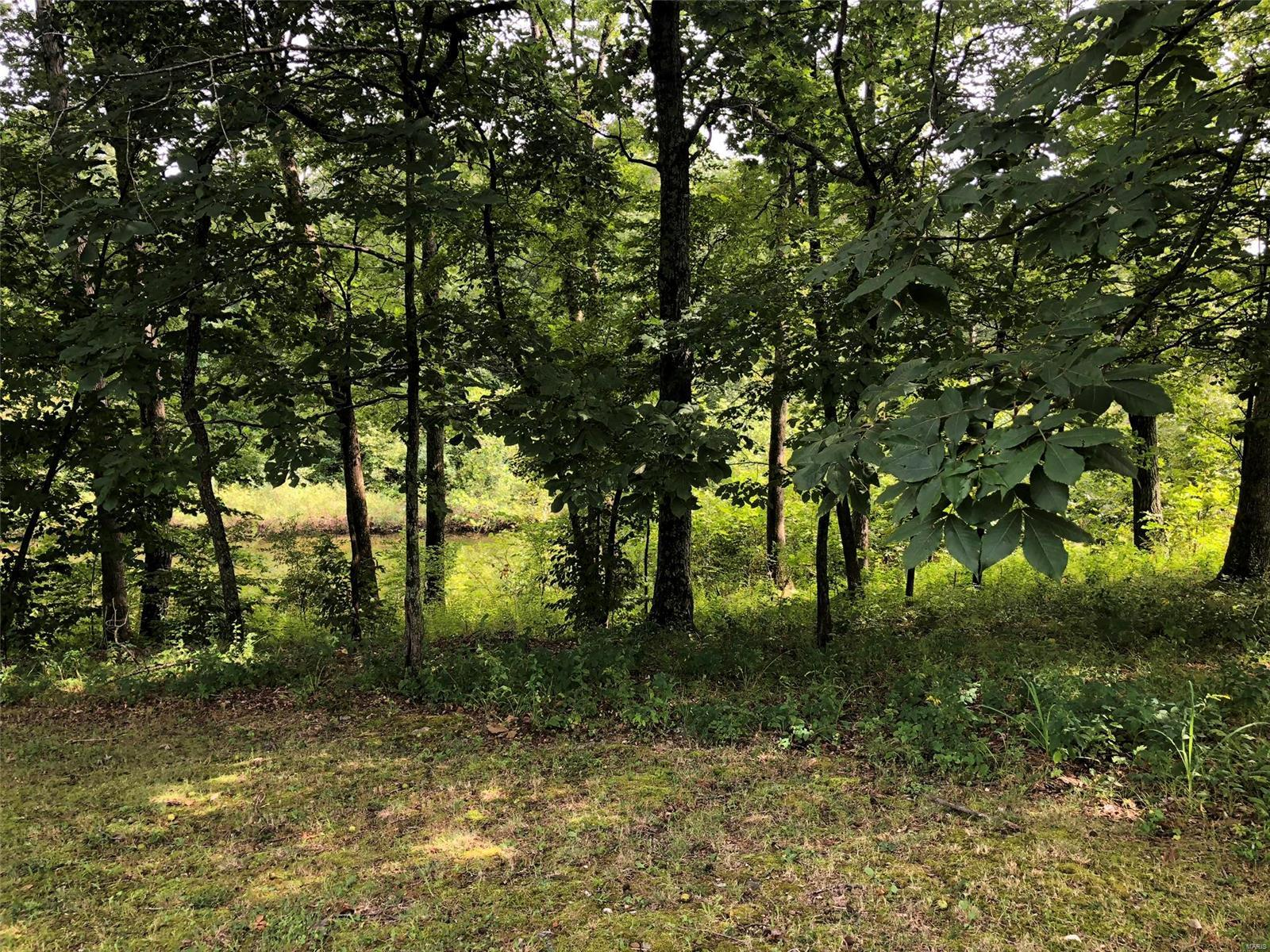0 Maple Creek Place Property Photo - Monroe City, MO real estate listing