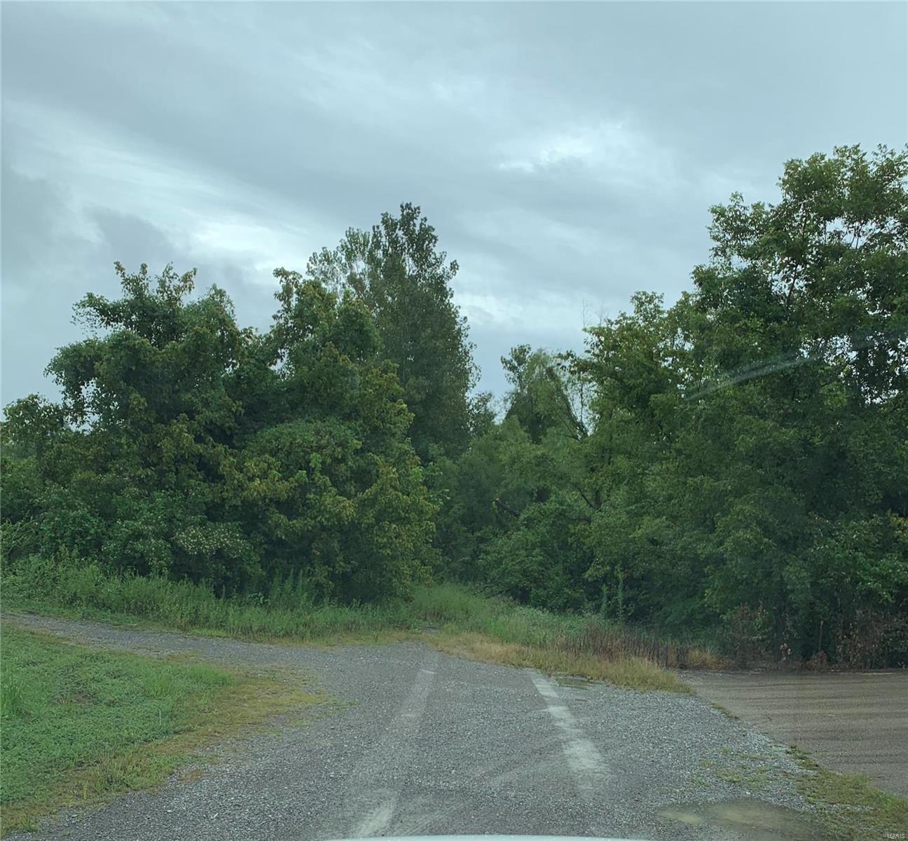 0 Locust Property Photo - Cape Girardeau, MO real estate listing