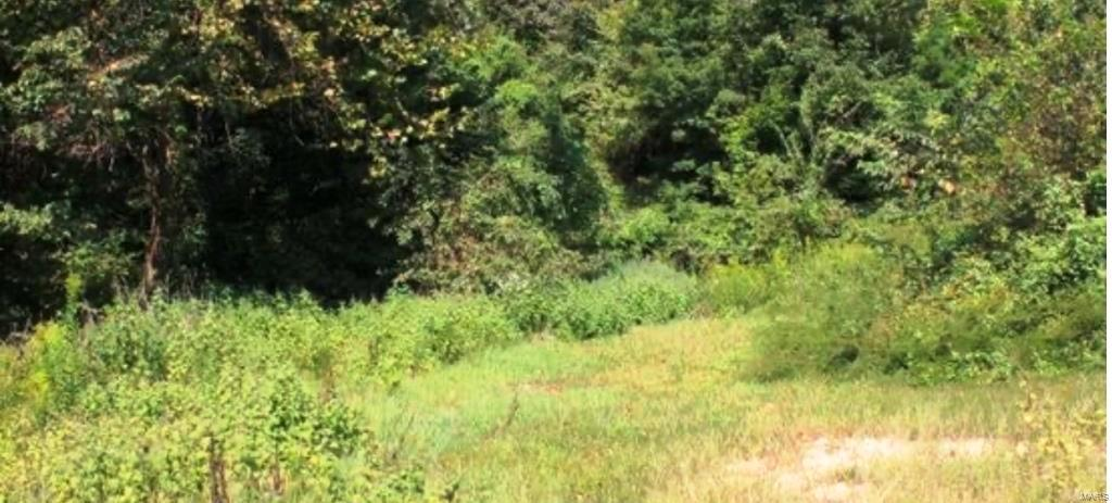 10242 Hwy H Property Photo - Ellington, MO real estate listing