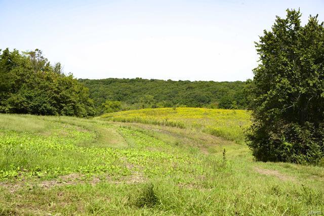 0 Tickridge Road Property Photo - Elsberry, MO real estate listing