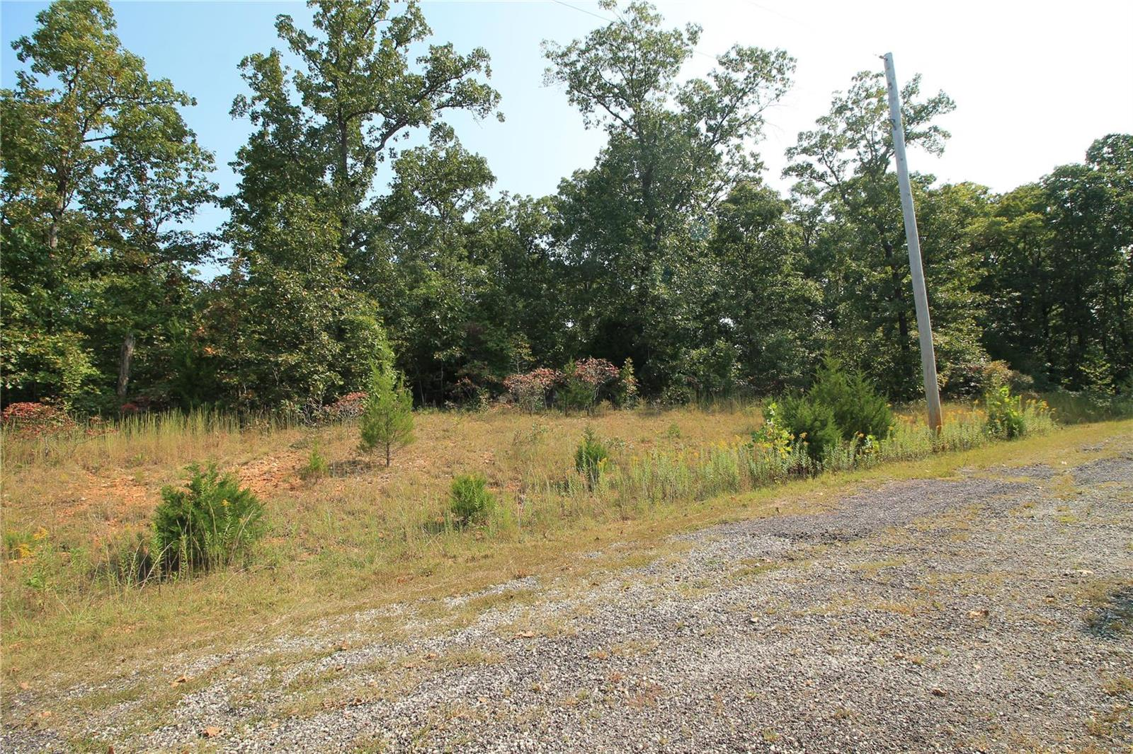 409 Burr Woods Property Photo - Dittmer, MO real estate listing
