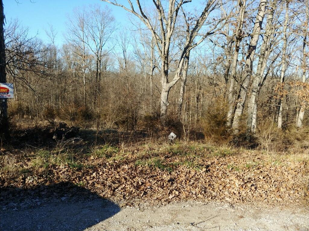 0 Lot 31 Green Drive Property Photo - Festus, MO real estate listing