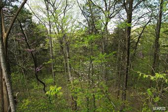 95 Emmaus Drive Property Photo - Marthasville, MO real estate listing