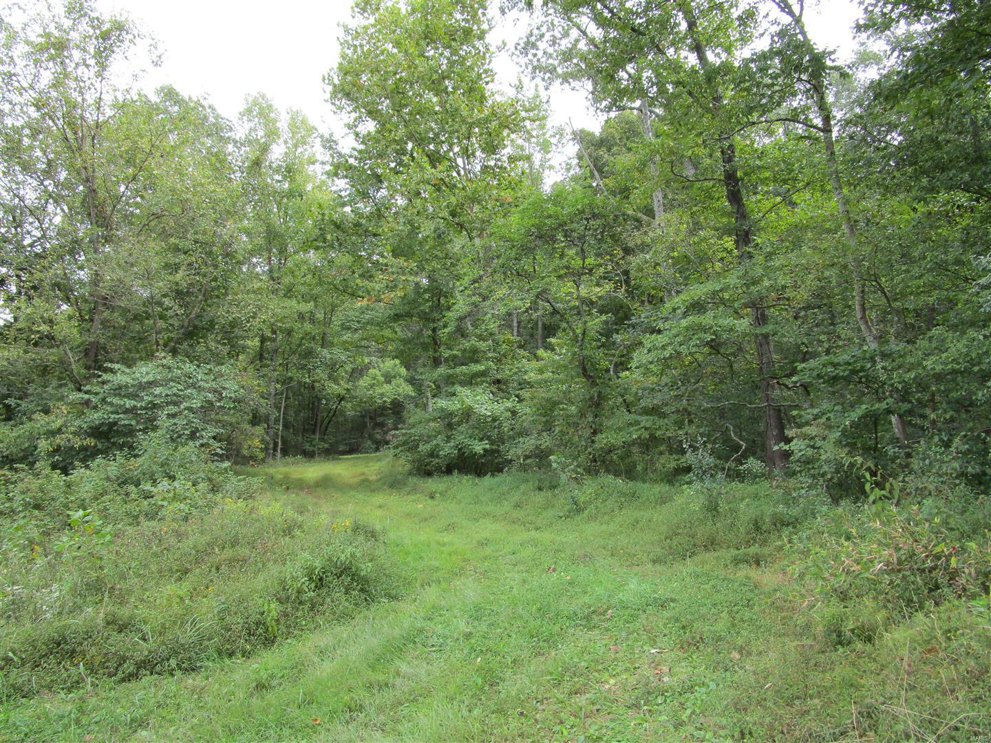 0 Forest Road Property Photo - Equality, IL real estate listing