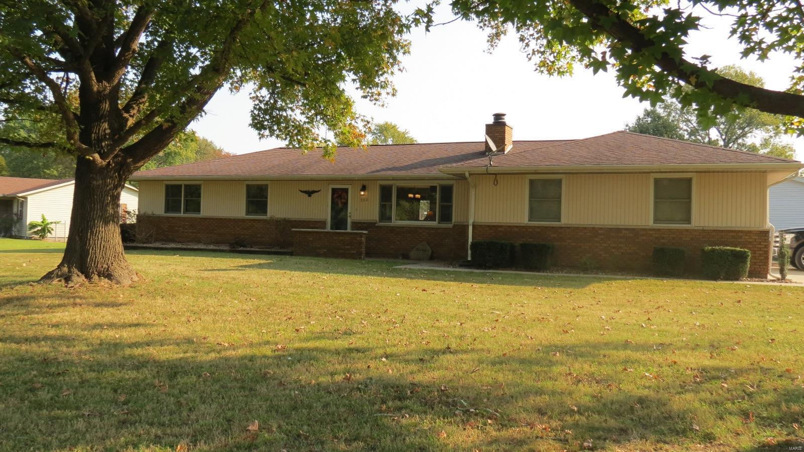 302 Lake Road Property Photo - De Soto, IL real estate listing