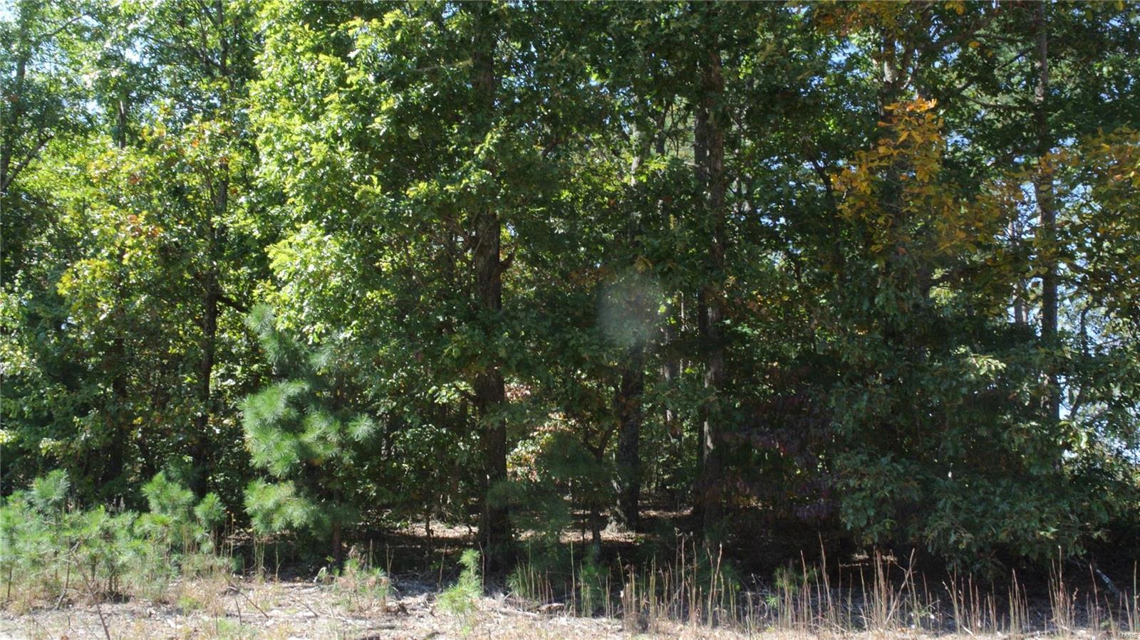 0 Carter 202/Tim Bradley Property Photo - Grandin, MO real estate listing