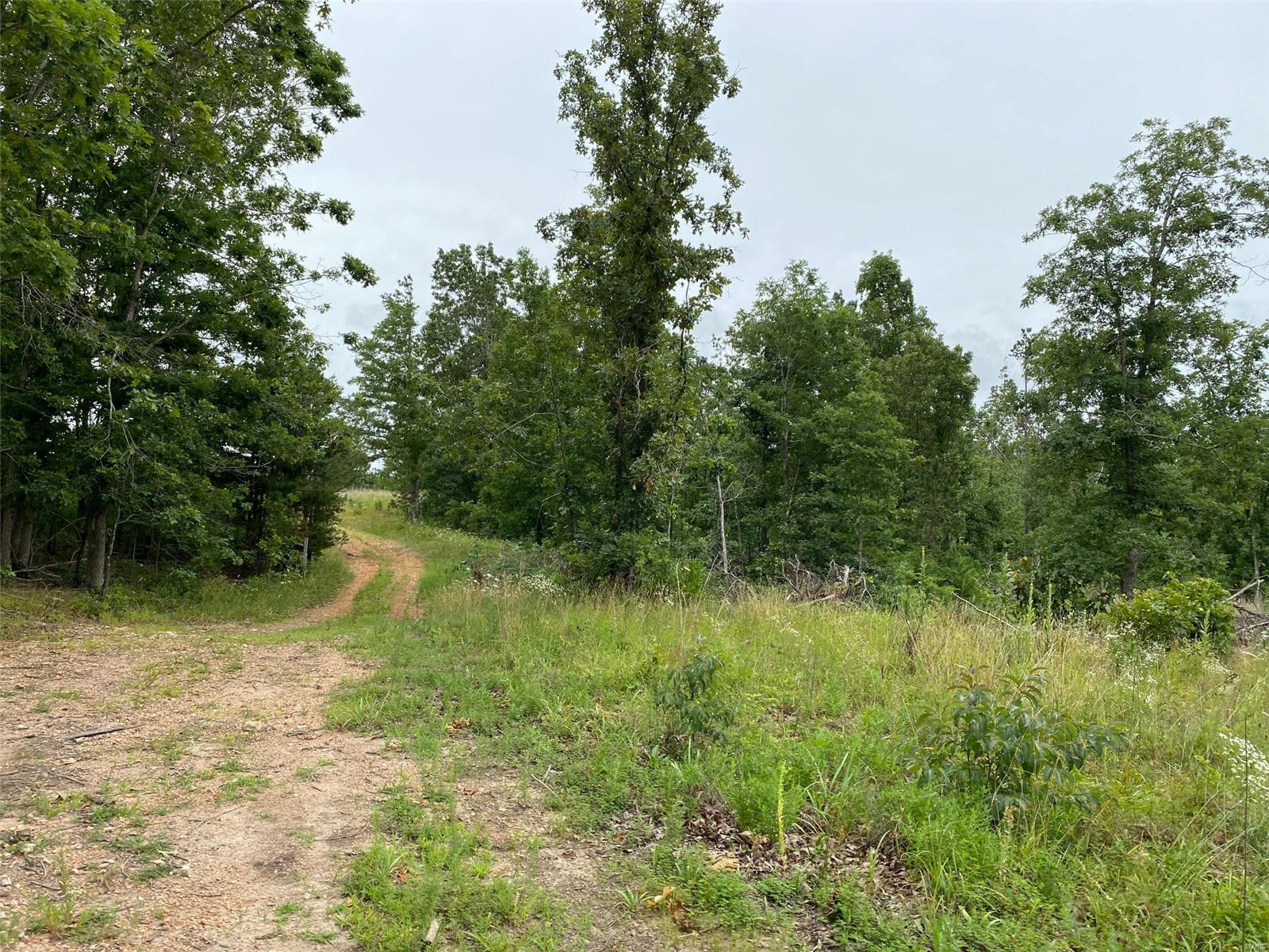 19800 Chisholm Trail Drive Property Photo - Raymondville, MO real estate listing