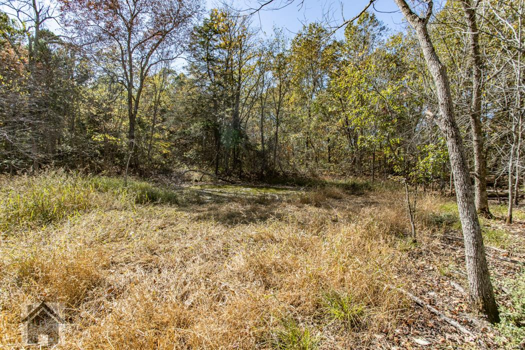 0 Highway 17 S Property Photo - Laquey, MO real estate listing
