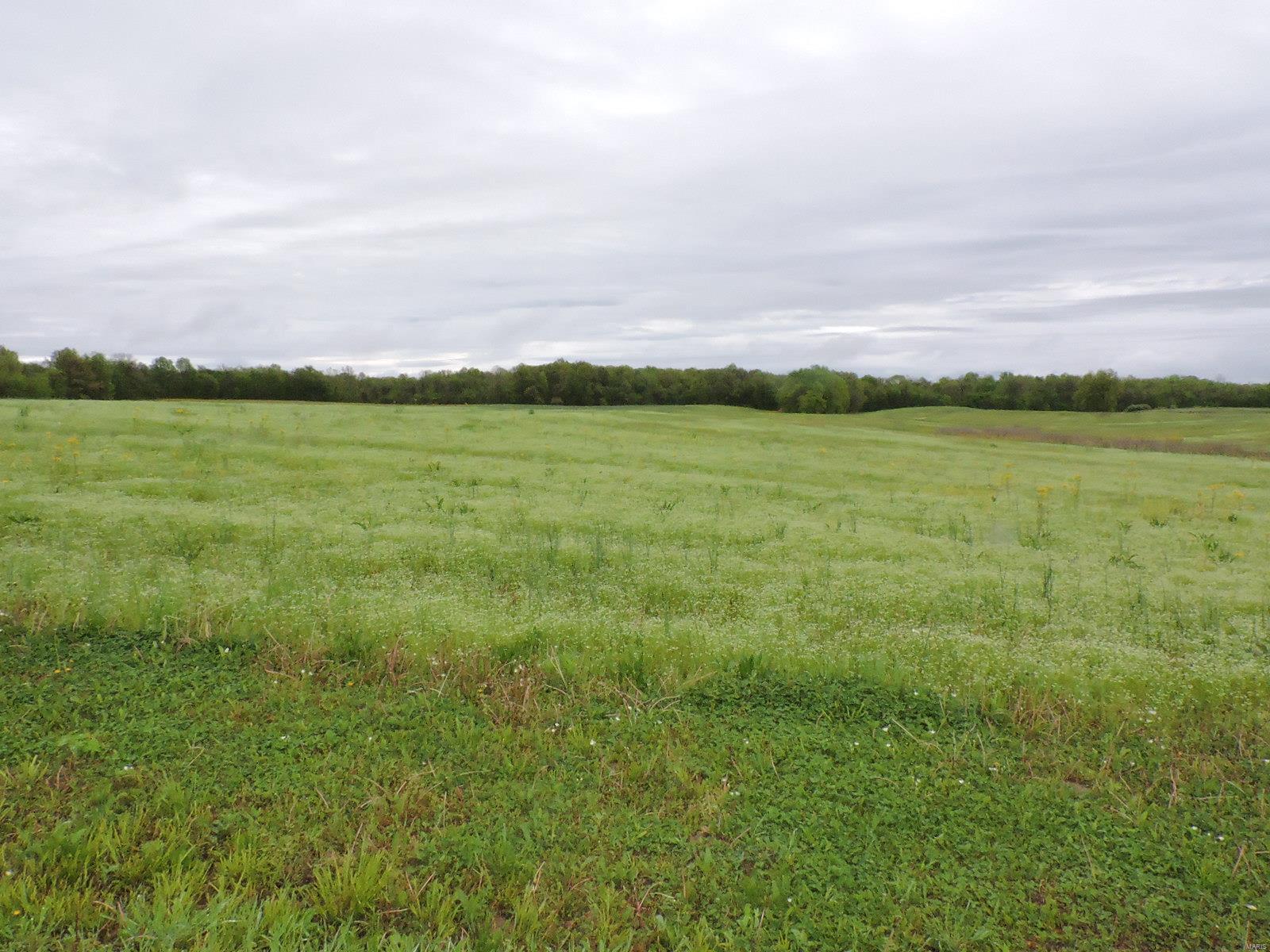 807 Casey Road Property Photo 1