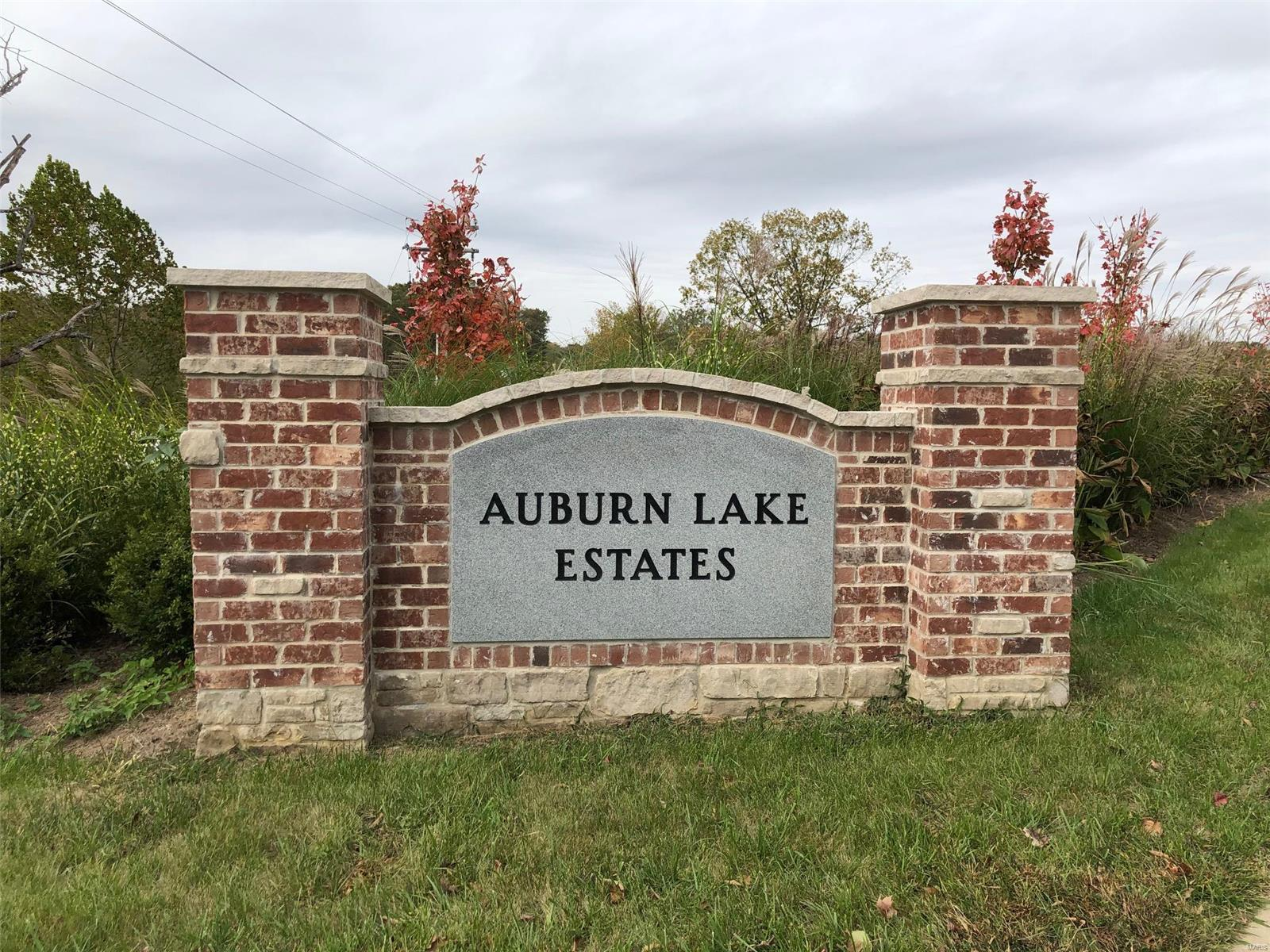292 Auburn Ridge (Lot 58) Drive Property Photo - Troy, MO real estate listing