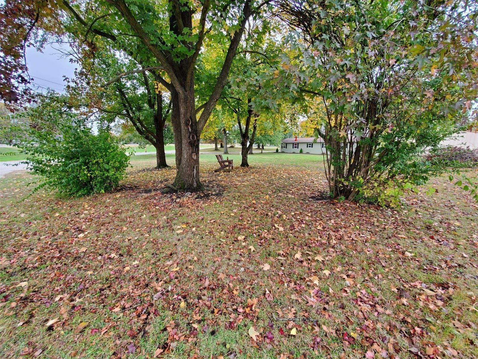 309 S Grace Property Photo - Marissa, IL real estate listing