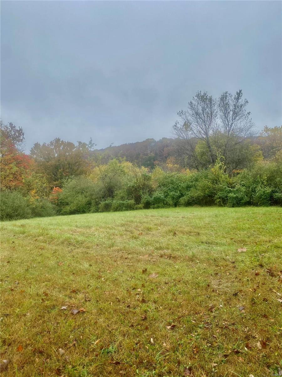 0 Lots 78 & 79 Osage Drive Property Photo - Sullivan, MO real estate listing