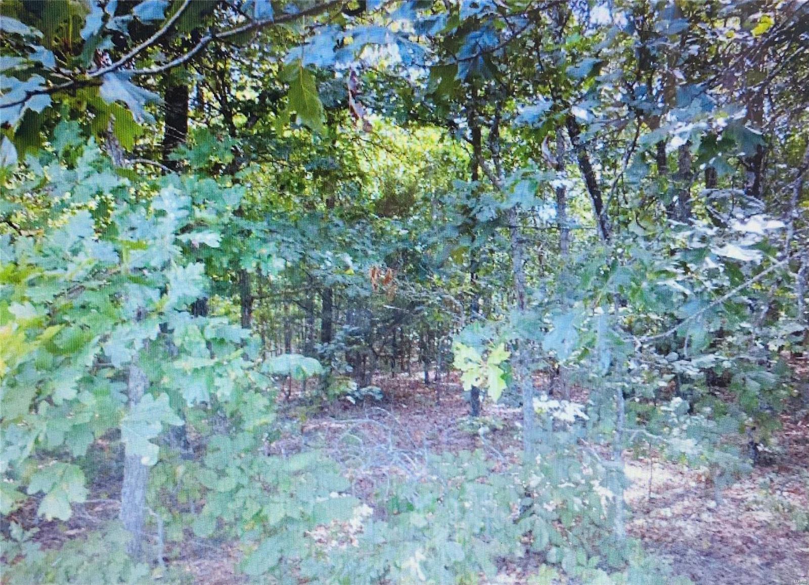 0 TBD Dogwood Trail Property Photo - Raymondville, MO real estate listing
