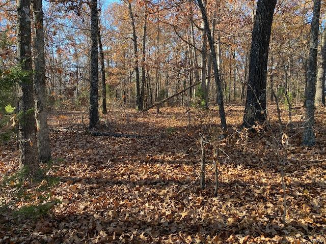 4495 Highway 63 Property Photo - Cabool, MO real estate listing
