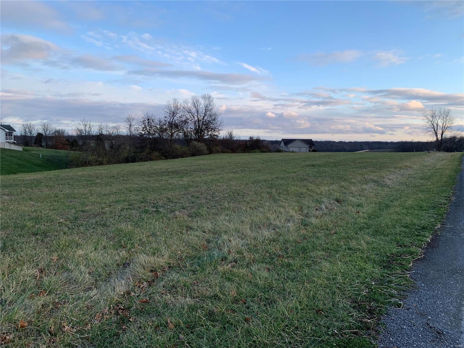 0 Garnet Road Property Photo - Carlinville, IL real estate listing