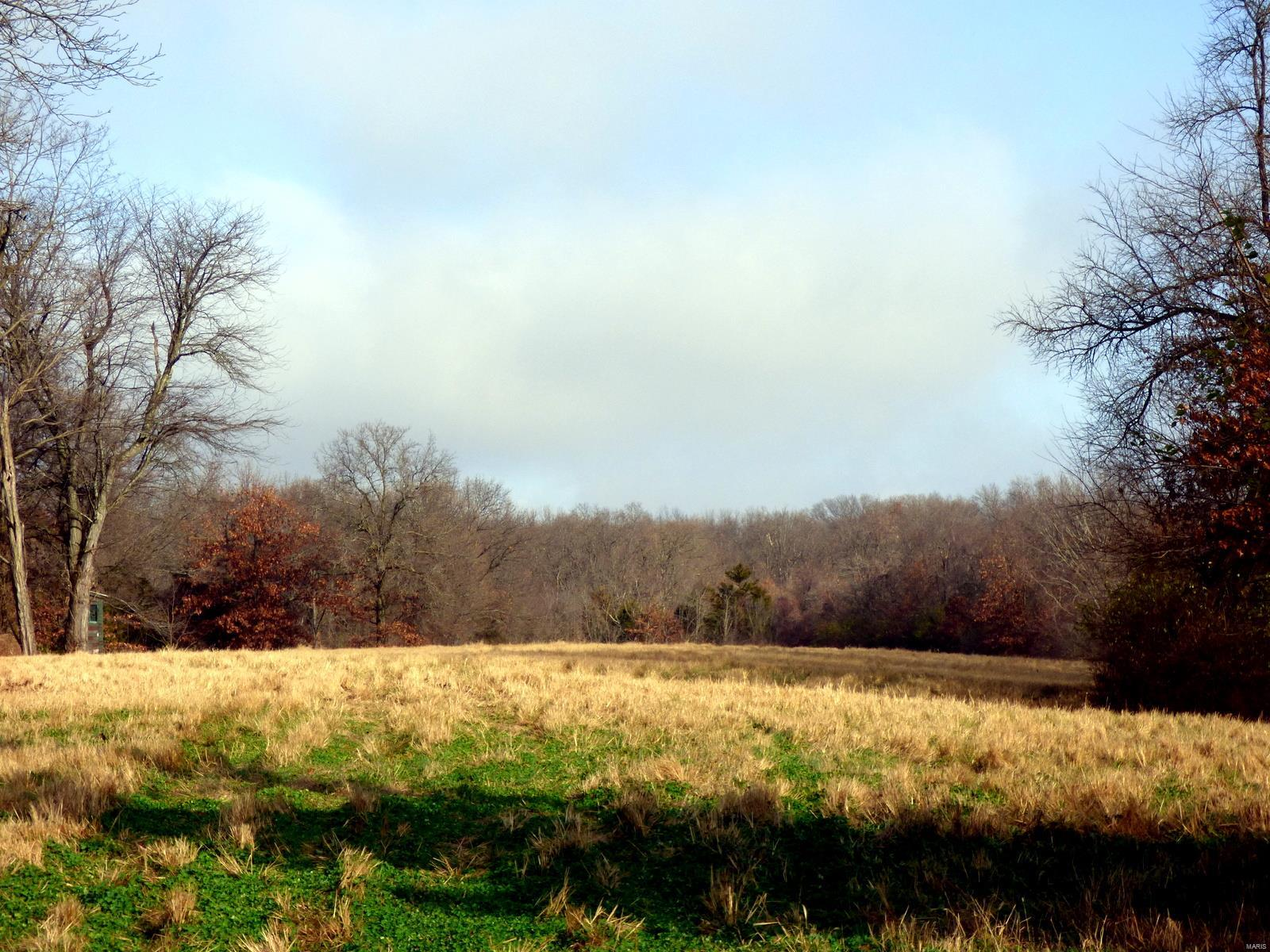 85 AC Highway JJ Property Photo - Elsberry, MO real estate listing