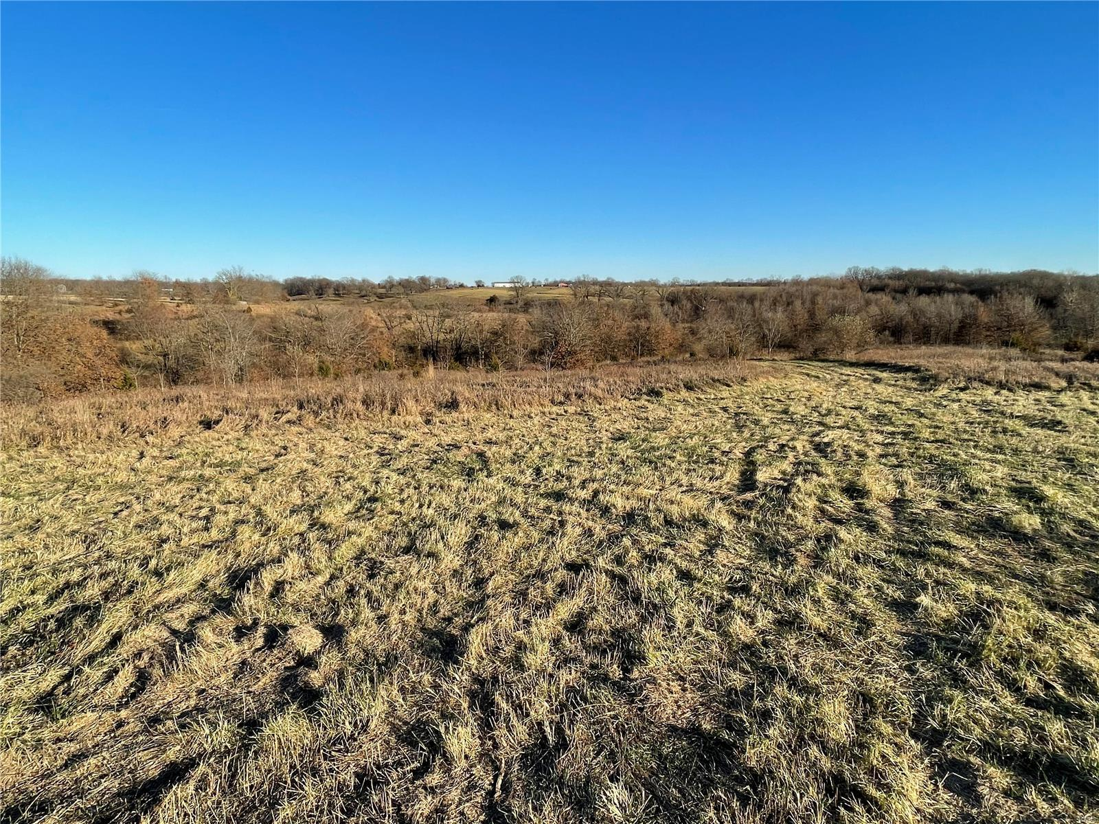 0 Morgan Lane (Tract 3.1) Property Photo - Eolia, MO real estate listing