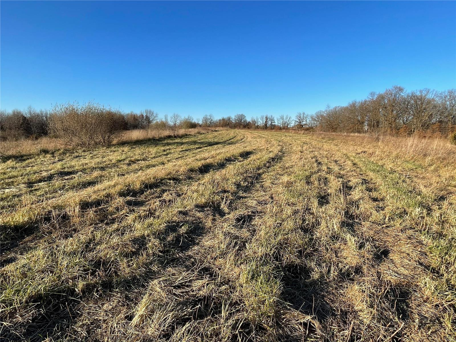 0 Morgan Lane (Tract 4) Property Photo - Eolia, MO real estate listing