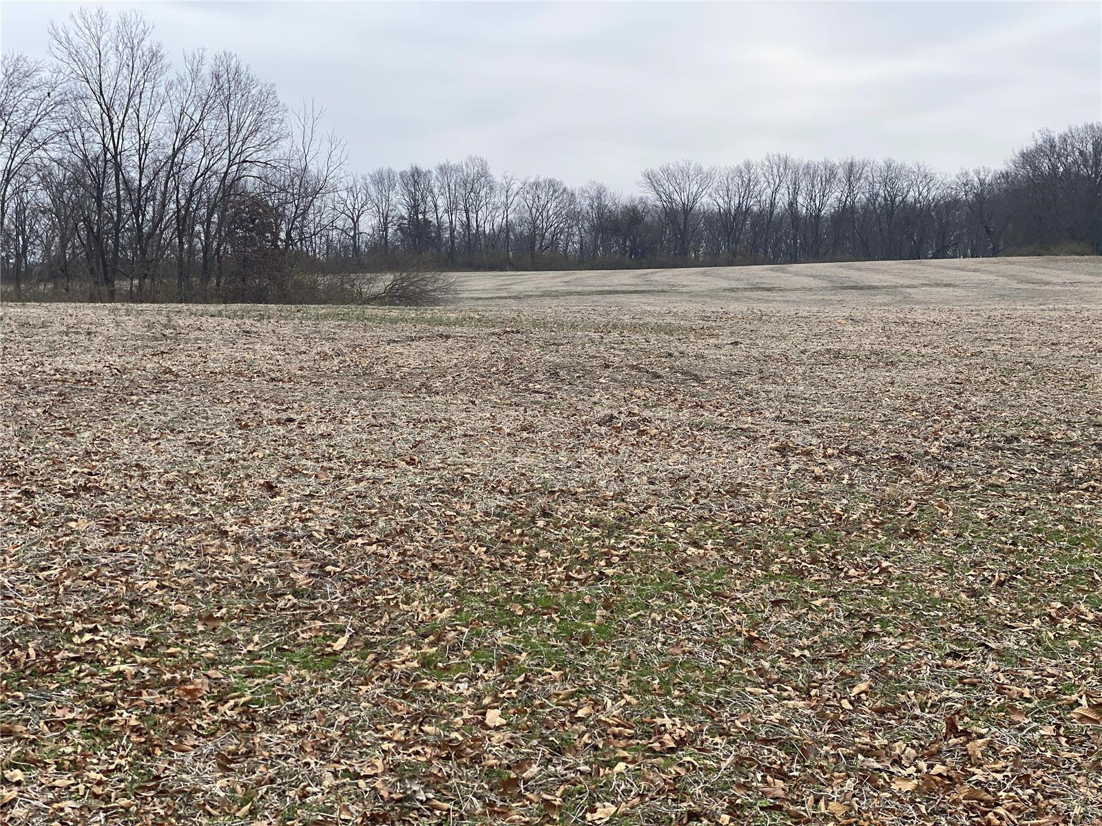 0 Elm Tree Road Property Photo - Moscow Mills, MO real estate listing