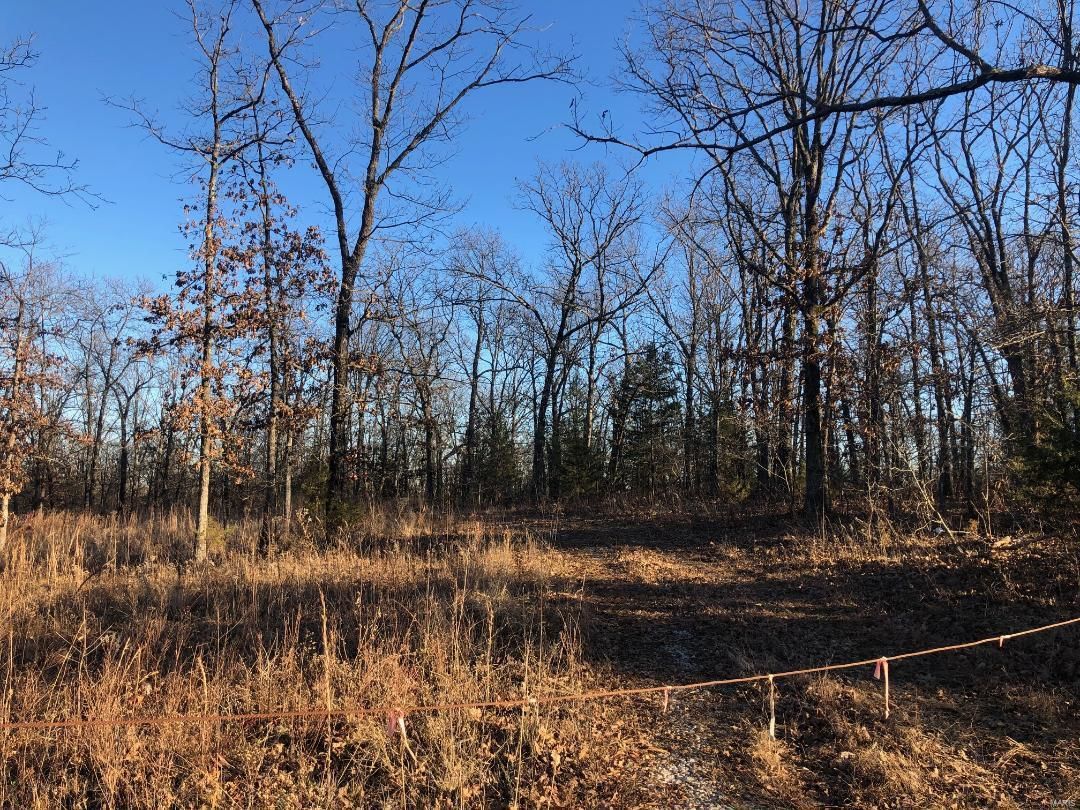 0 N State Hwy 21 Property Photo - Cadet, MO real estate listing
