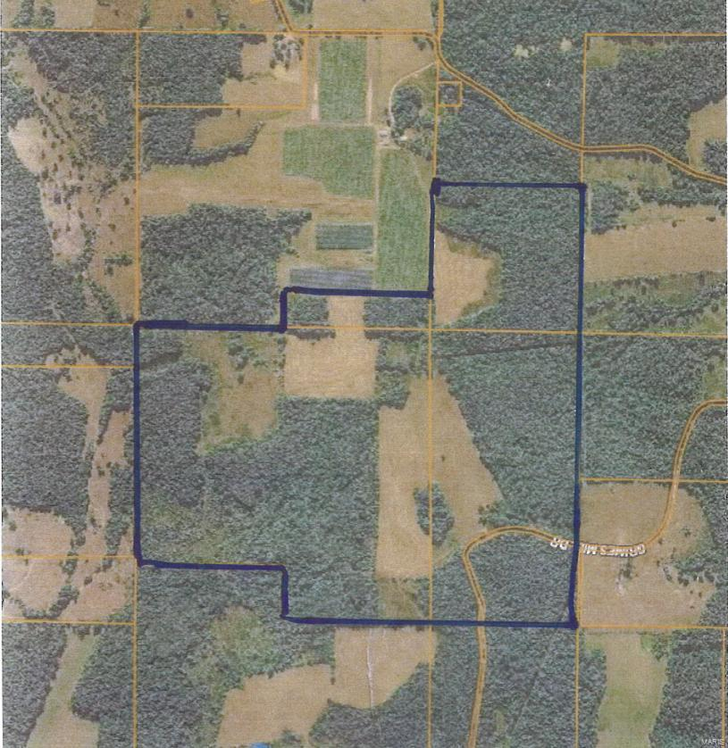0 Grimes Mill Road Property Photo - Mountain Grove, MO real estate listing