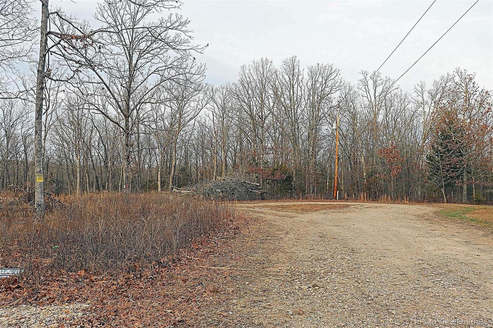 1110 Woodland Hills Court Property Photo - Irondale, MO real estate listing