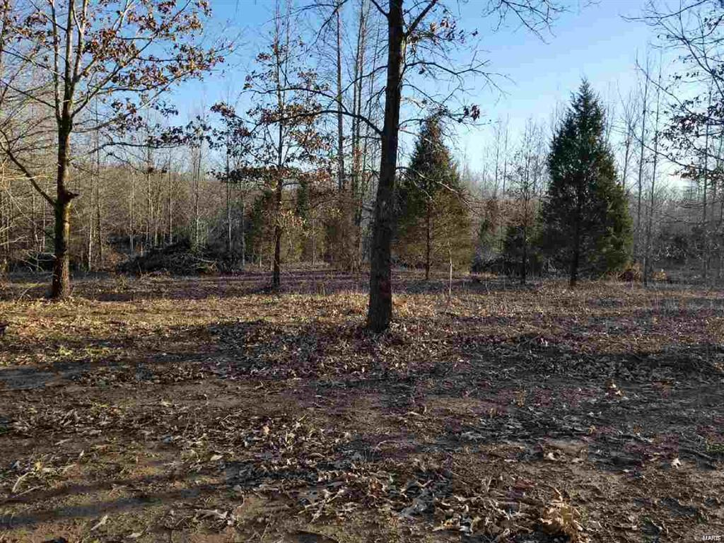0 CR 517 LOT 6 Property Photo - Wappapello, MO real estate listing
