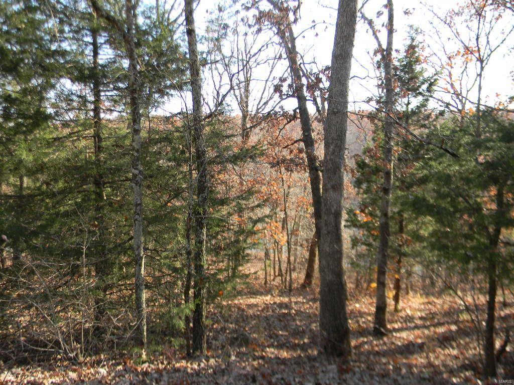 12 .34 Acres - Oakwood Valley Property Photo