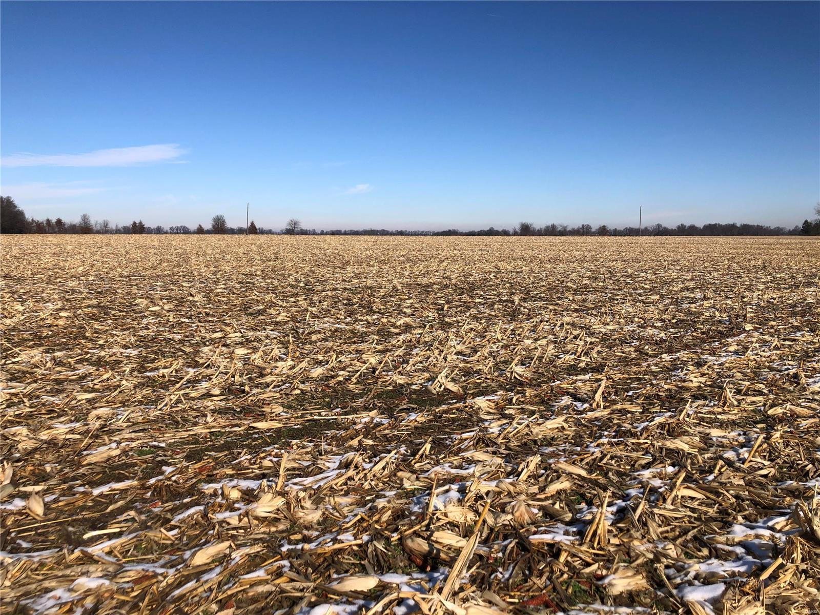 0 Line & Edwards Road Property Photo - Middletown, MO real estate listing