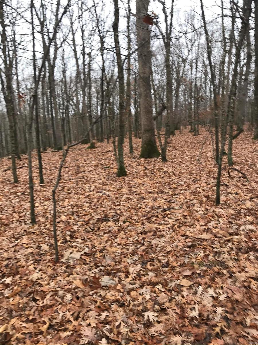 0 Skyline Drive Property Photo - New Florence, MO real estate listing