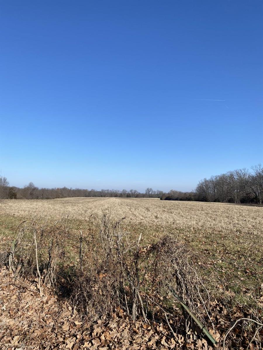 0 Links Rd 11230000034001000 Property Photo - Unincorporated, MO real estate listing