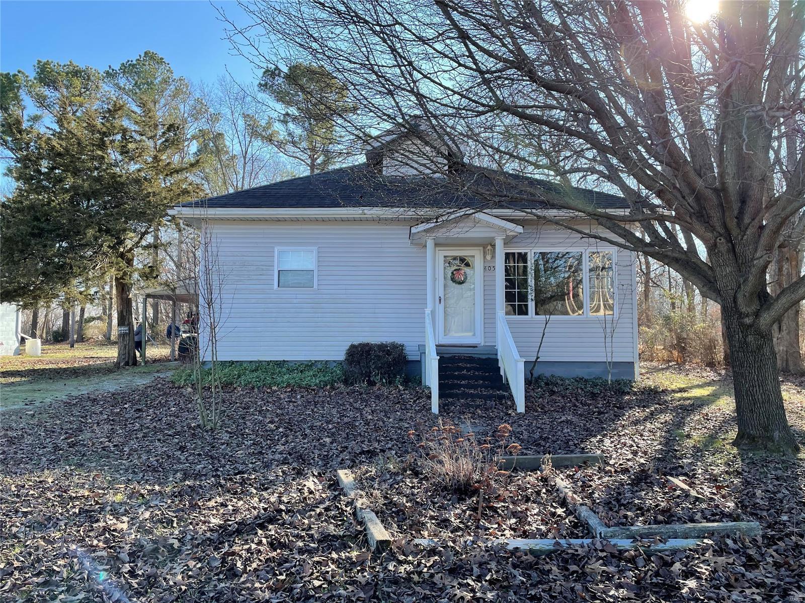 405 Poplar Avenue Property Photo - De Soto, IL real estate listing