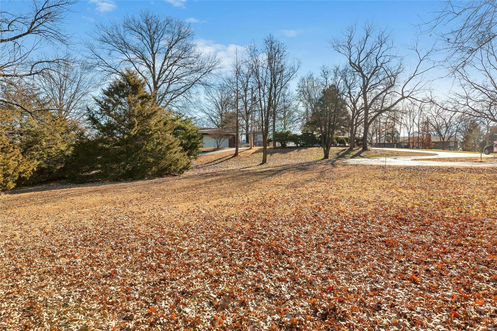 12890 Edelen Lane Property Photo - St Louis, MO real estate listing