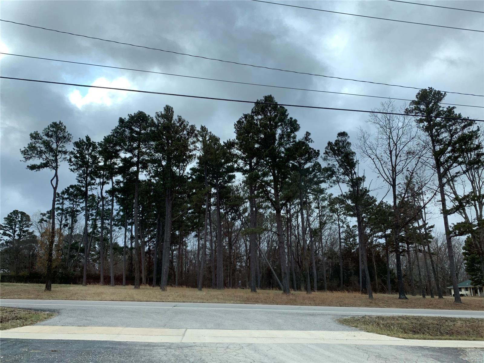 0 Highway 17 Property Photo - Houston, MO real estate listing