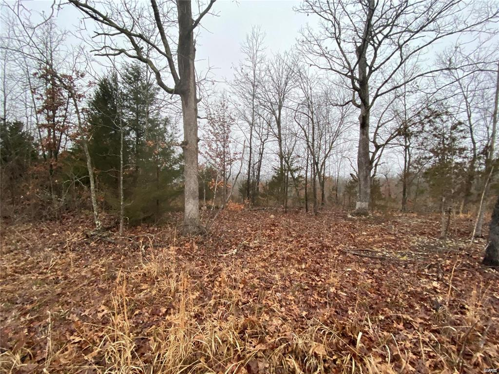 1 Kingston Road Property Photo - Unincorporated, MO real estate listing