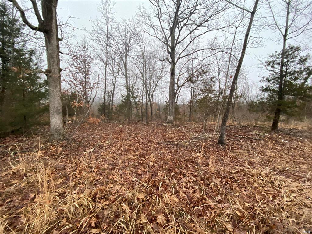 8 Kingston Road Property Photo - Unincorporated, MO real estate listing