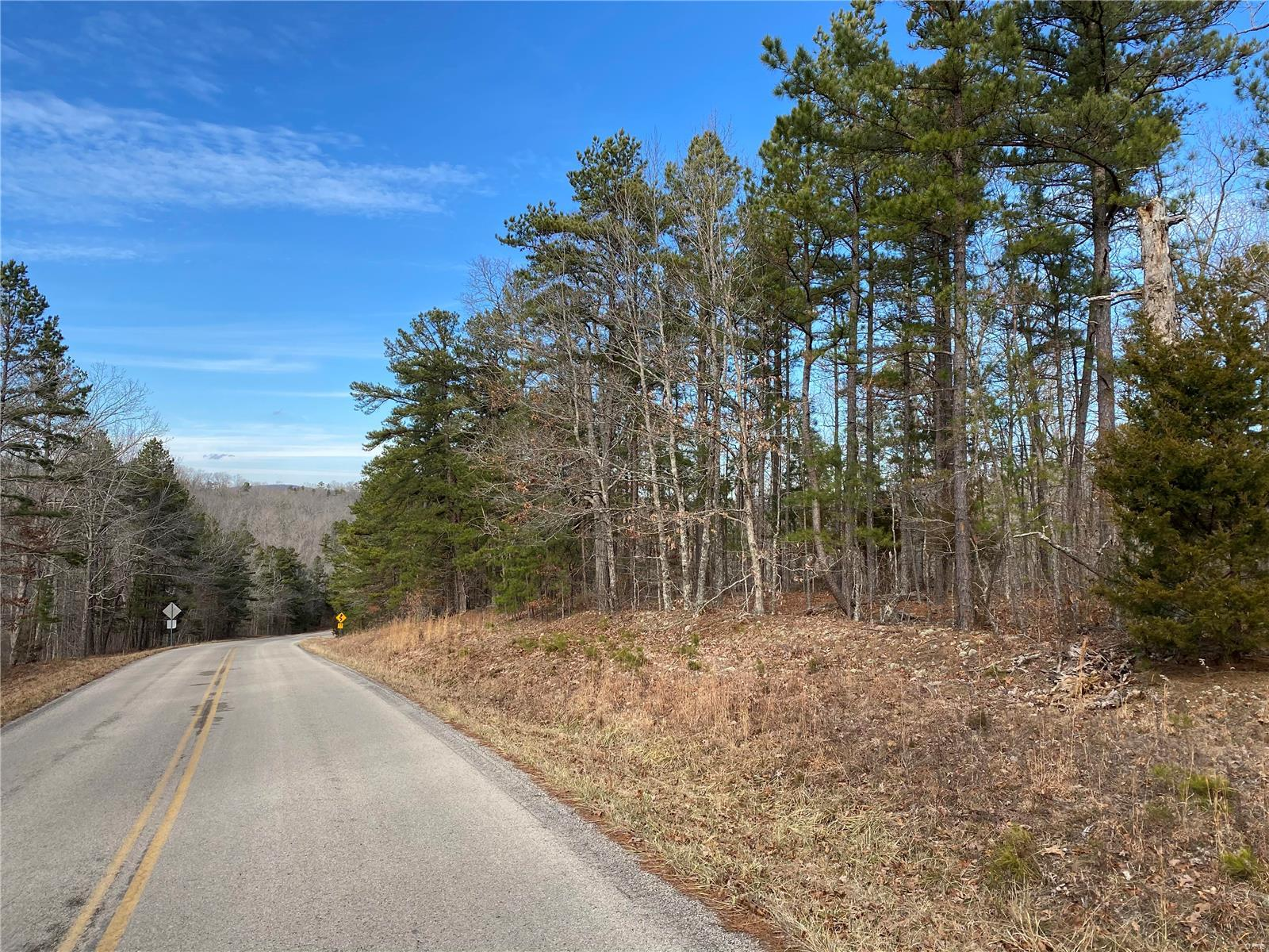 0 Hwy FF Property Photo - Annapolis, MO real estate listing