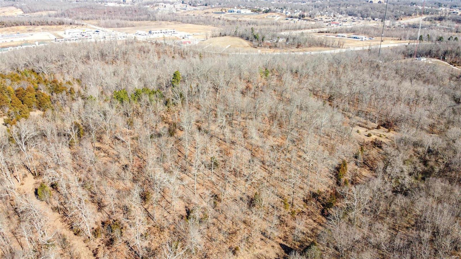 0 11 +/- acres South of HWY PP Property Photo - Poplar Bluff, MO real estate listing