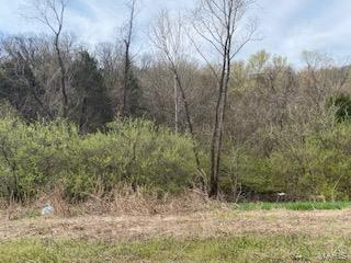 2170 New State Highway M Property Photo - Barnhart, MO real estate listing