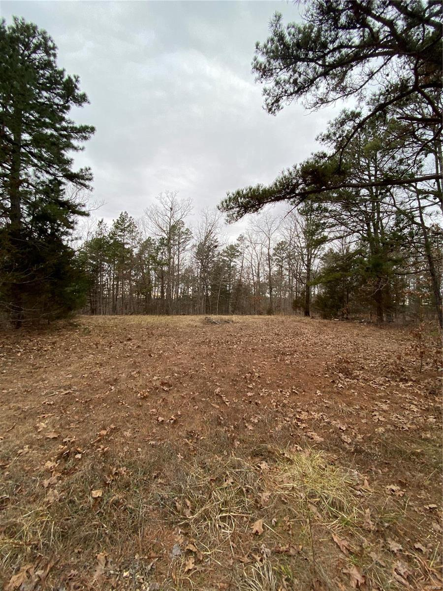 11805 Maxey Drive Property Photo - Licking, MO real estate listing