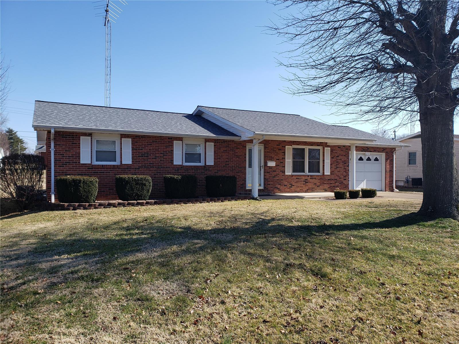 213 Williams Property Photo - Fredericktown, MO real estate listing