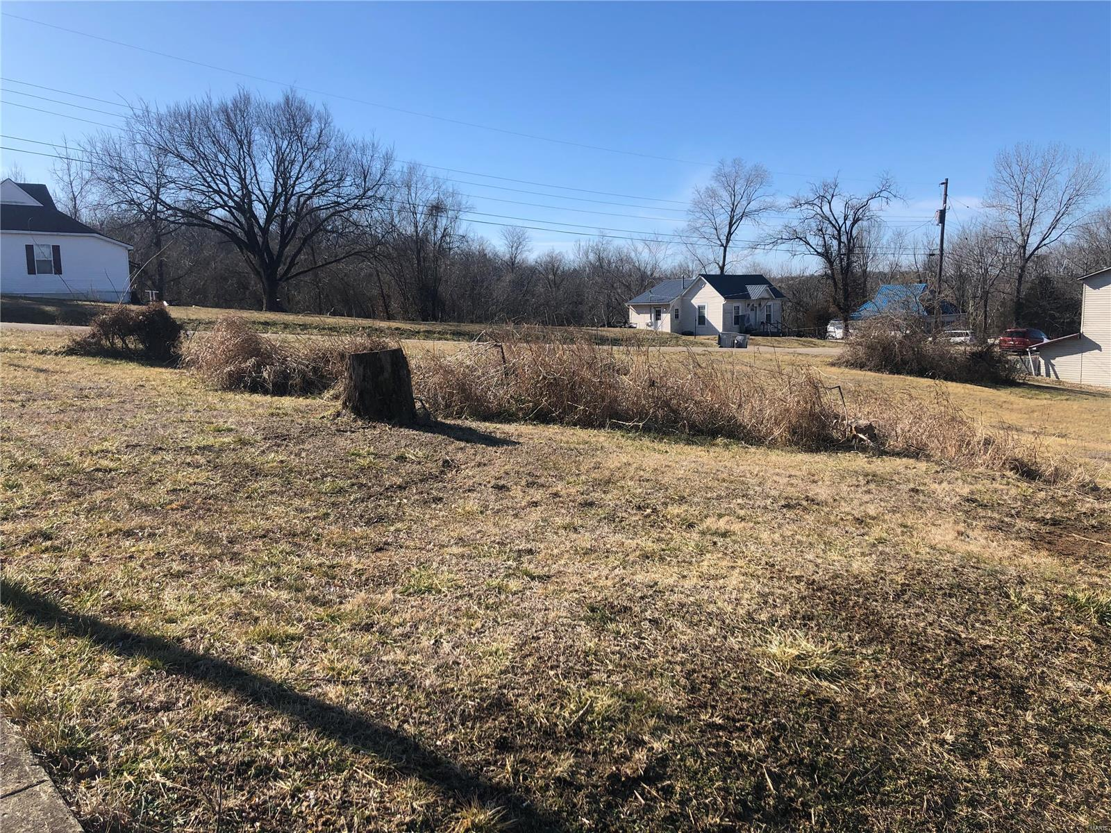 1001 West Street Property Photo - Leadwood, MO real estate listing