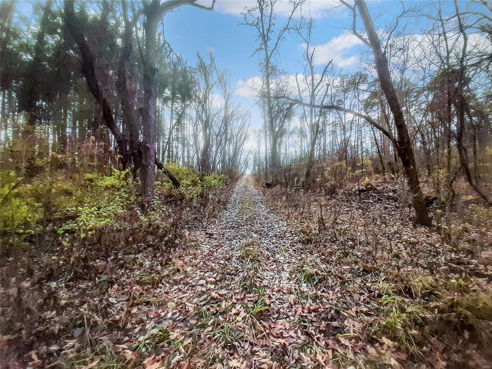 0 21.23+/- Acres Cuivre Ford Road Property Photo