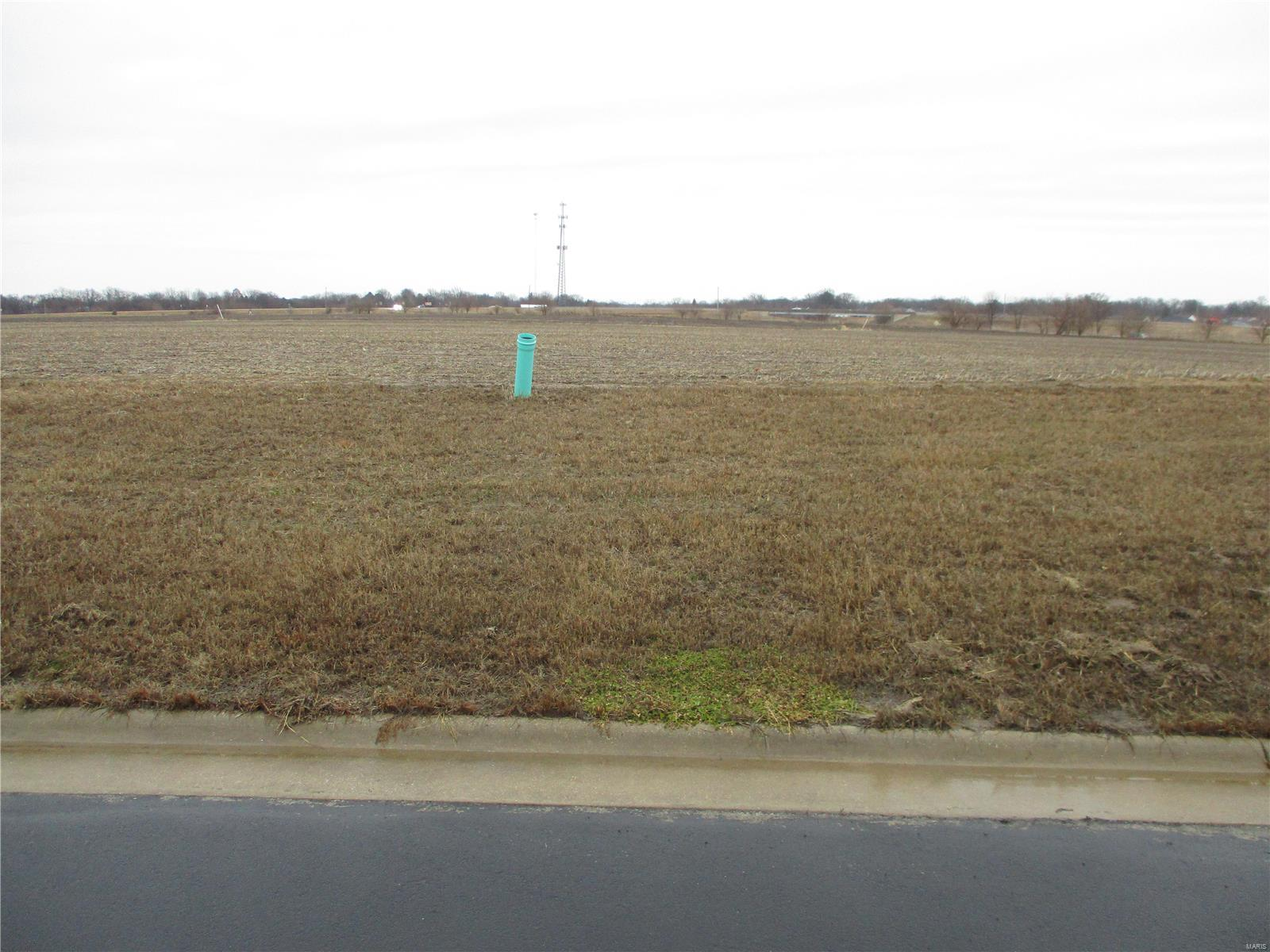 13120 Highway Business Drive Property Photo - Trenton, IL real estate listing
