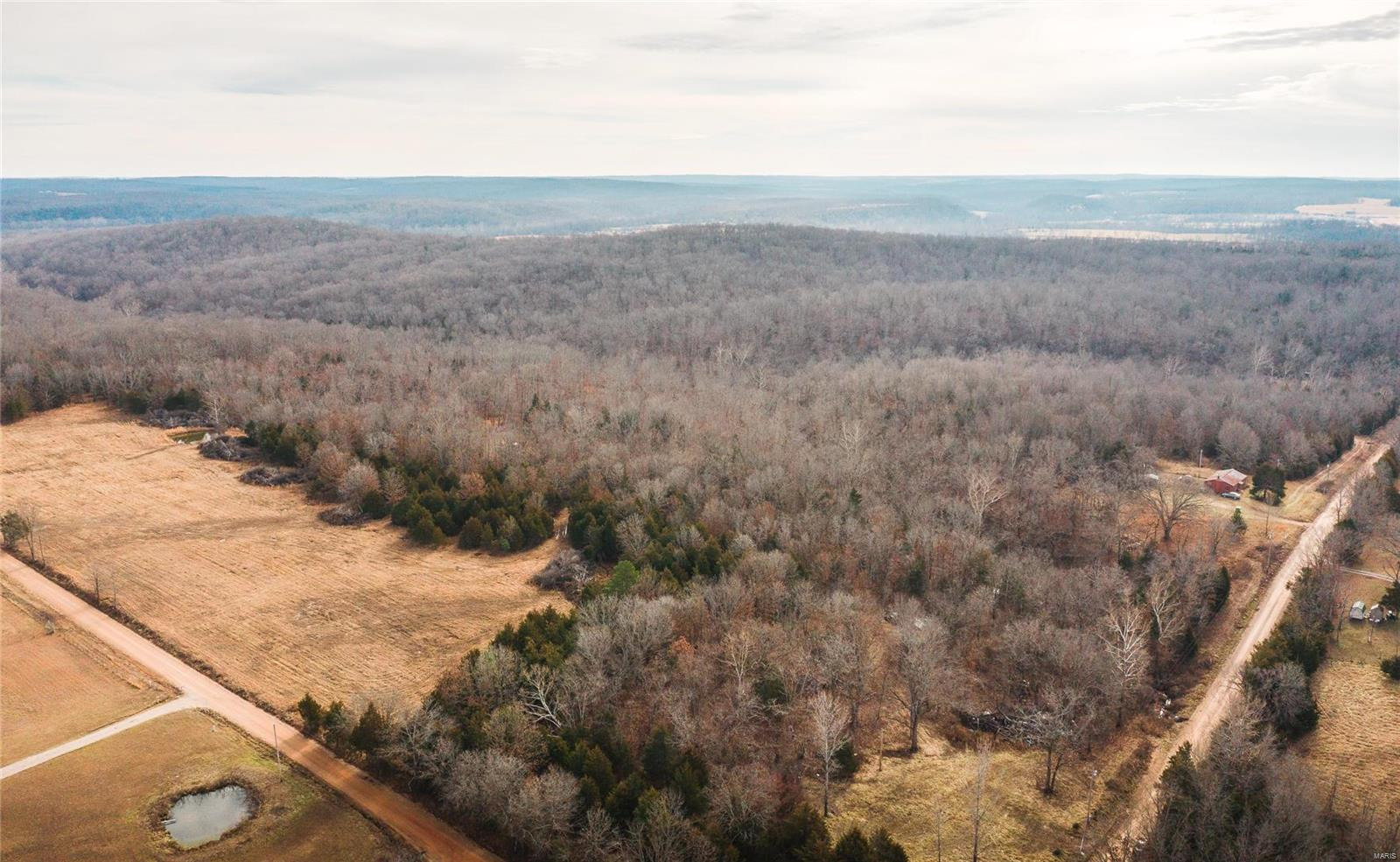 37434 Deloney Road Property Photo - Falcon, MO real estate listing