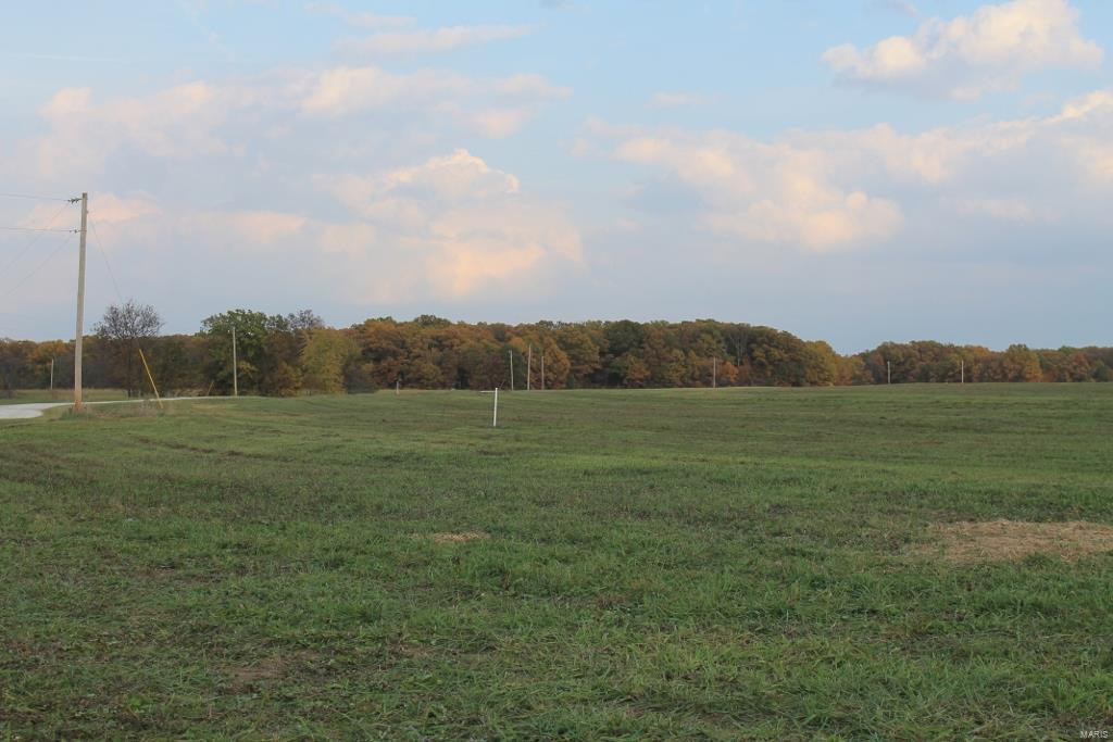 0 5.0 acres Canterbury Park Property Photo - Warrenton, MO real estate listing