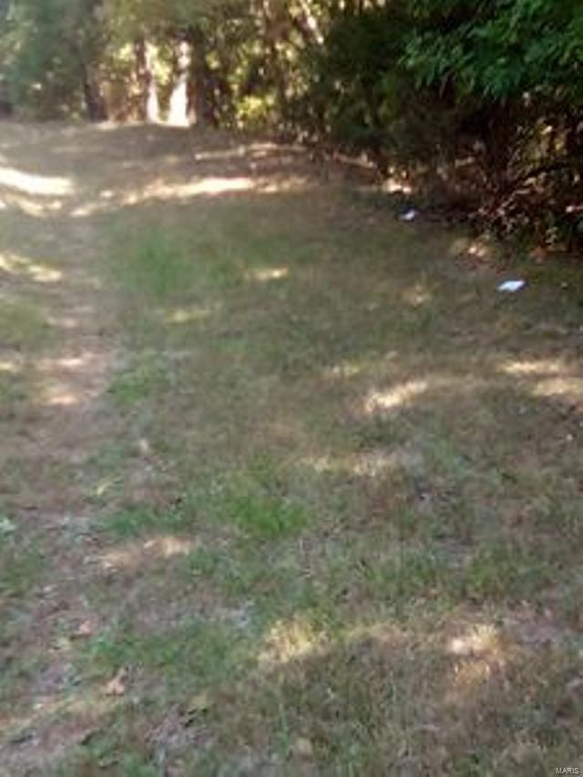 0 Hwy Ff Property Photo - Lonedell, MO real estate listing