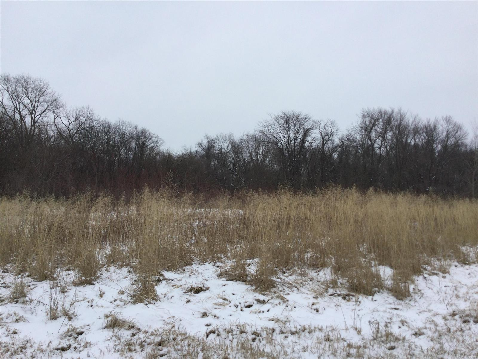 10210 State Route 143 Property Photo - Marine, IL real estate listing