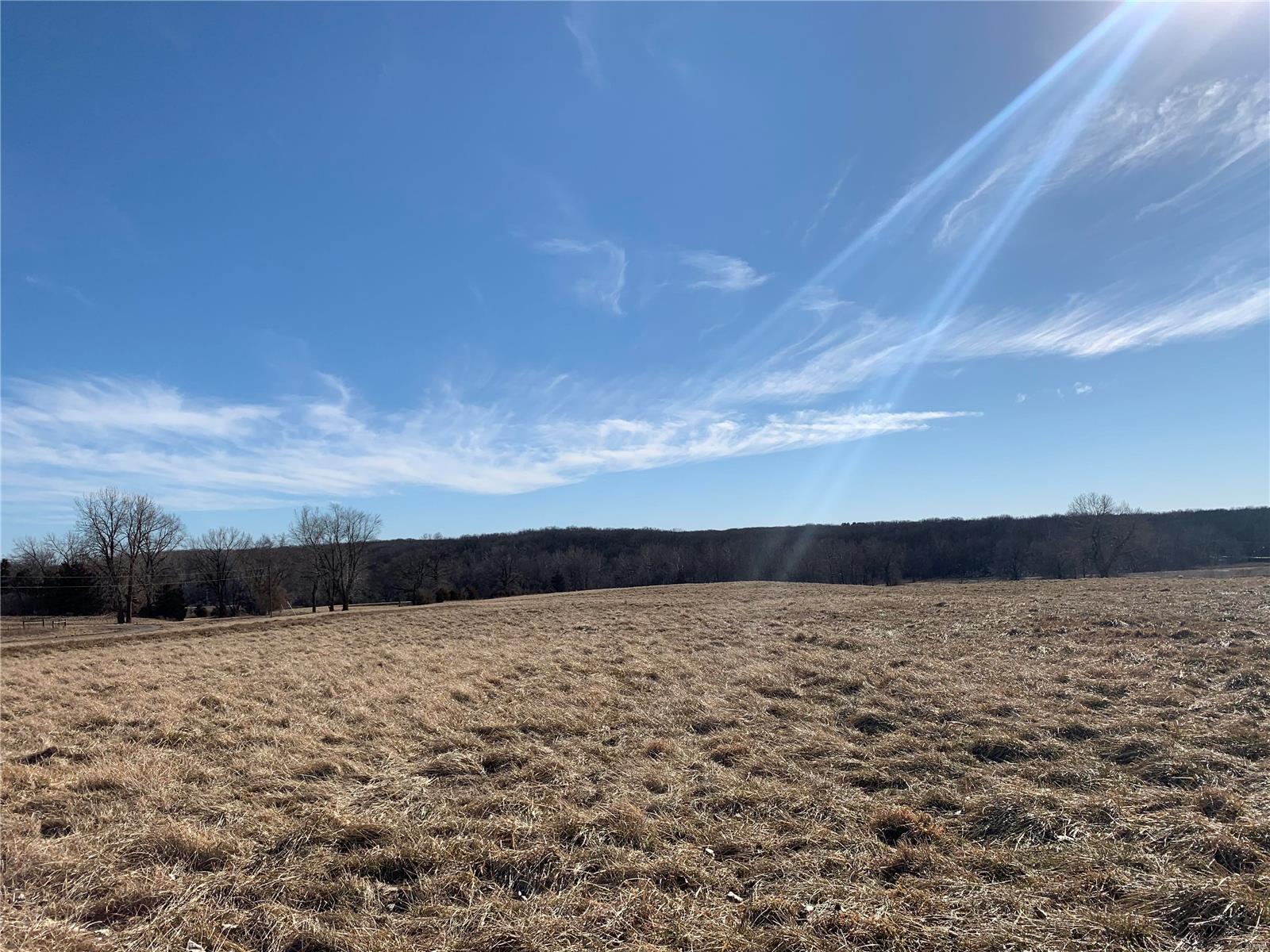 0 County Road 128 Property Photo - Fulton, MO real estate listing