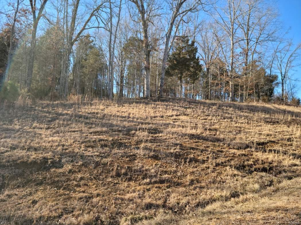 0 Clifty Lane Property Photo - Goreville, IL real estate listing